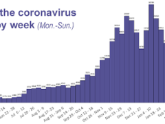 Kentucky Department for Public Health chart showing new coronavirus cases in the state by week since March